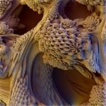 honeycomb-heaven-med
